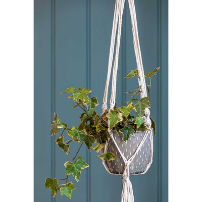 Macrame Hanging Plant Pot with Ivy