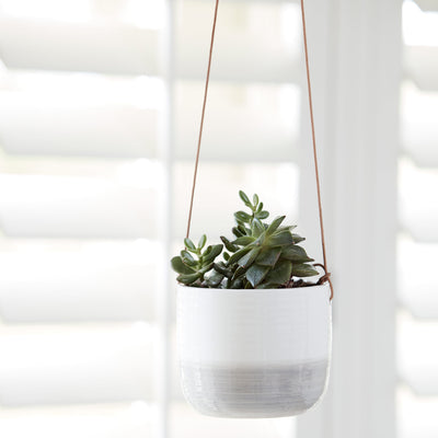 Ripple Hanging Indoor Plant Pot - Planted