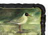Black-headed Gull | Hand Painted Tray