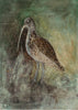 Original Painted Panel - Curlew