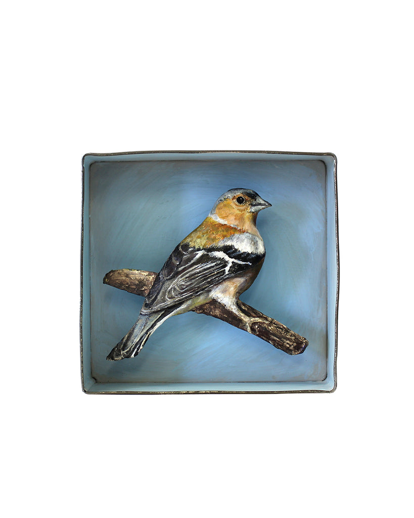 Paper Taxidermy | Chaffinch
