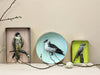 Paper Taxidermy | Arctic Skua