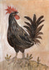 Original Framed Painted Panel - The Rooster