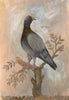 Original Framed Painted Panel - Rock Dove