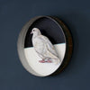 Paper Taxidermy | Dove