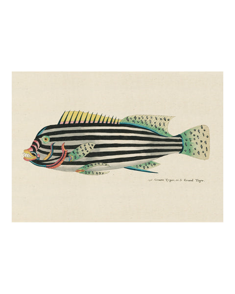 Folk Art Fish No7