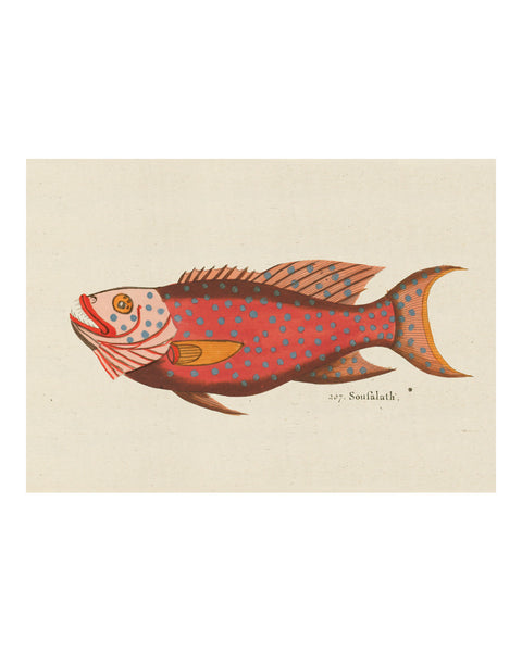 Folk Art Fish No13