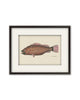Folk Art Fish No1