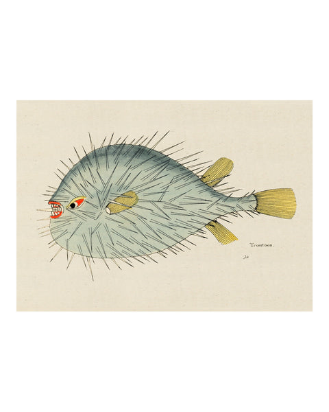 Folk Art Fish No16