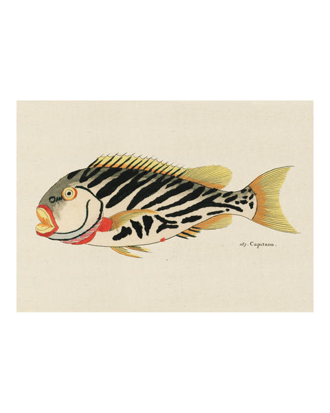 Folk Art Fish No18