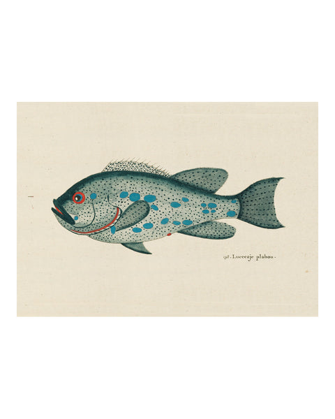 Folk Art Fish No2