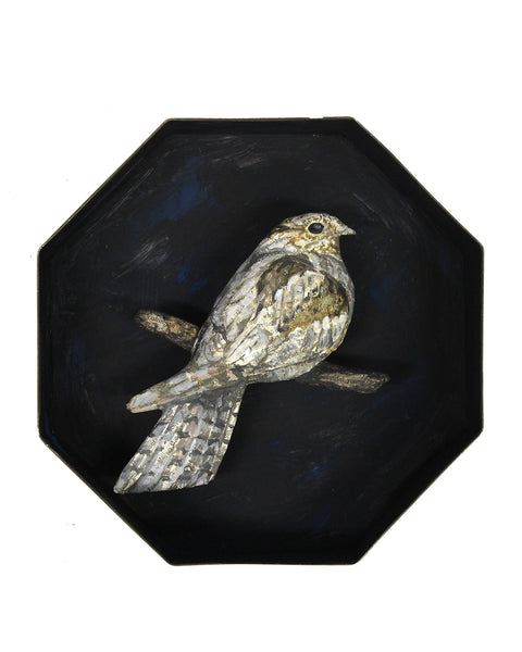 Paper Taxidermy | Nightjar