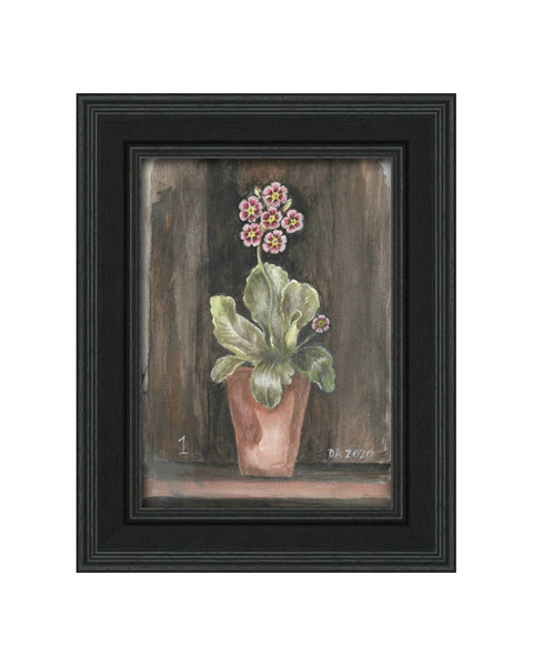 Auricula No.1 - Original Framed Painting