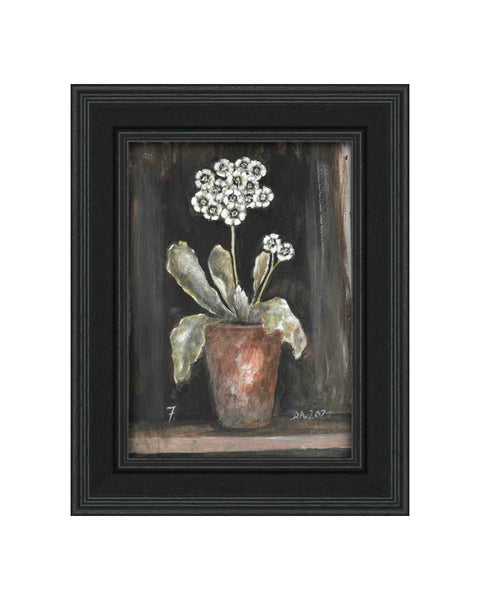 Auricula No.7 - Original Framed Painting