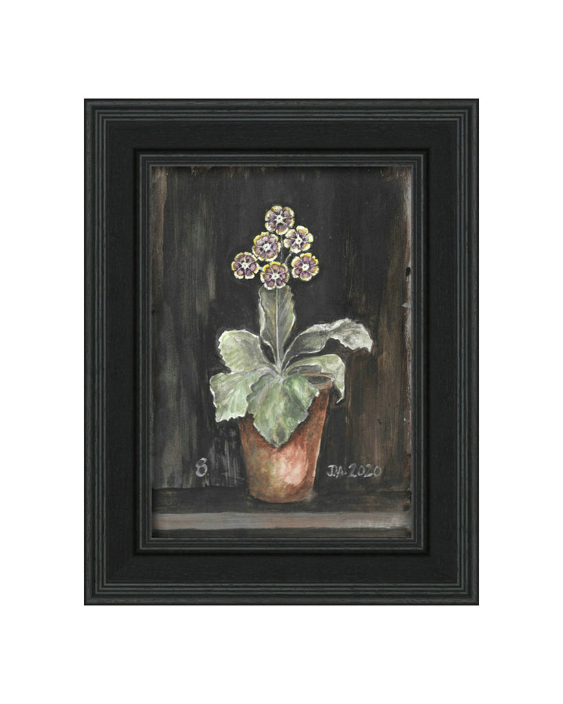 Auricula No.8 - Original Framed Painting