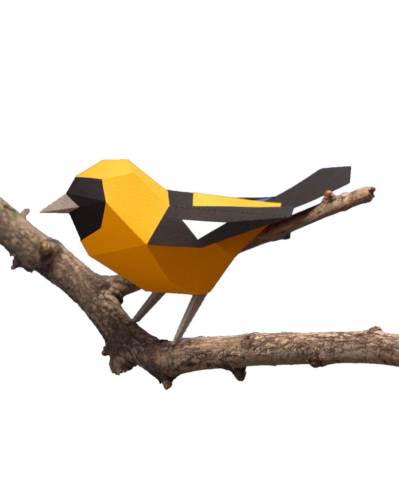 PAPER BIRD KIT - Orange Backed Troupial