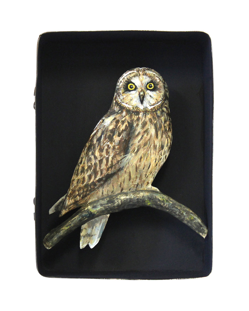 Paper Taxidermy | Short Eared Owl
