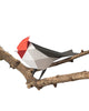 PAPER BIRD KIT - Red Crested Cardinal