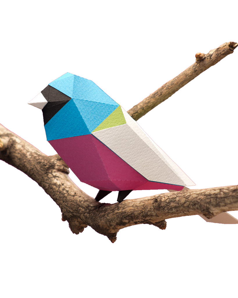 PAPER BIRD KIT - Surucua Trogon