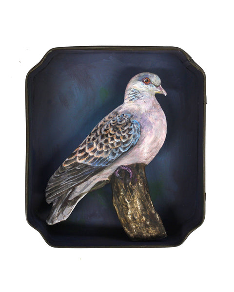 Paper Taxidermy | Turtle Dove