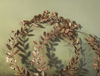Hedgerow Wreath: SEED POD STARS