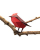 PAPER BIRD KIT - Vermilion Flycatcher
