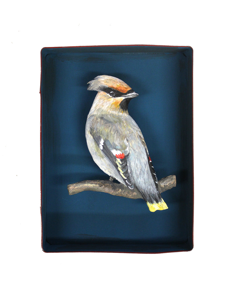 Paper Taxidermy | Waxwing