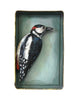 Paper Taxidermy | Woodpecker