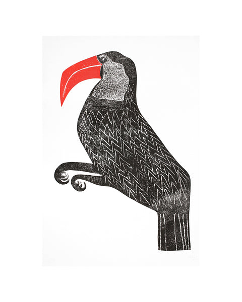 Toucan - large monoprint