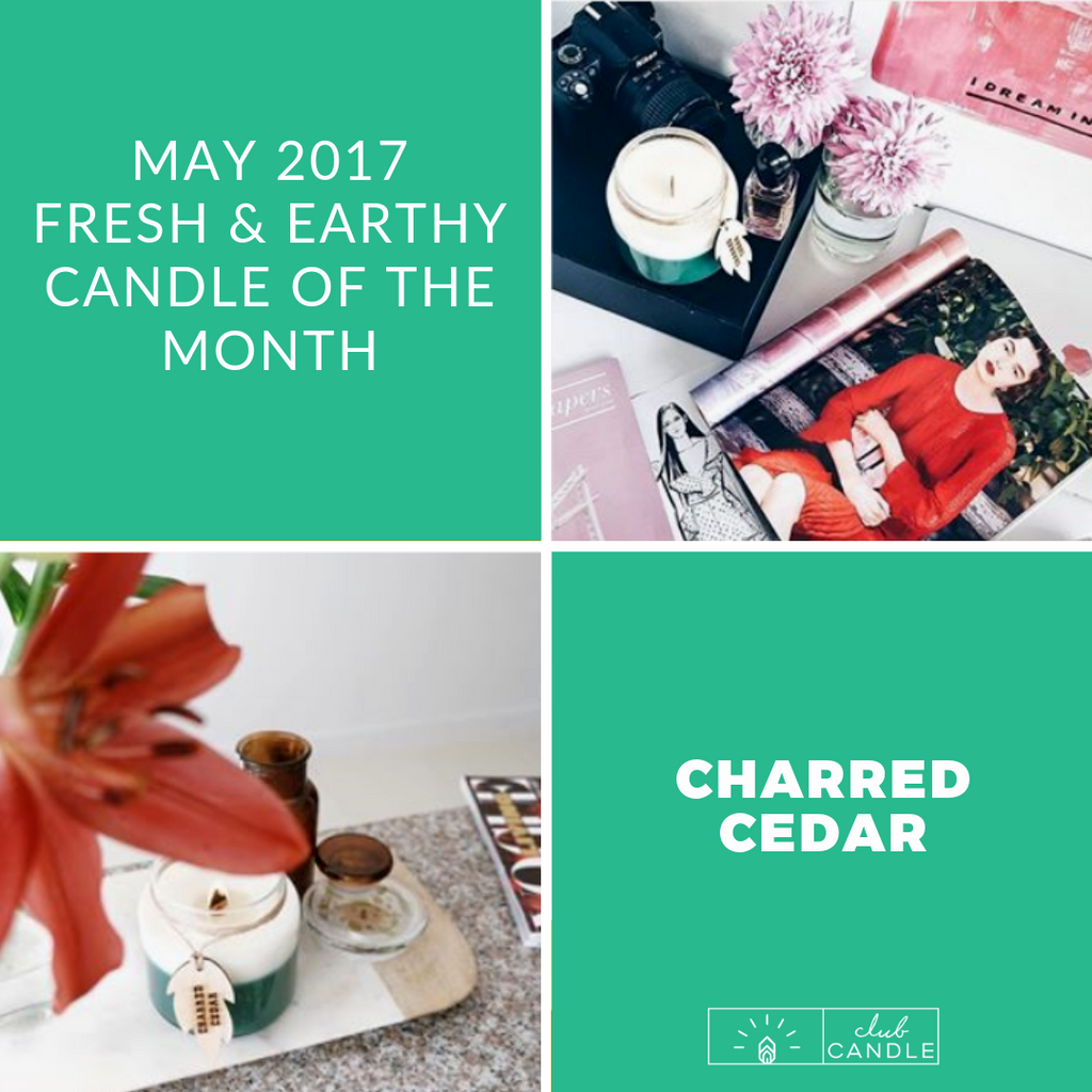 Candle of the Month - Charred Cedar