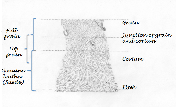 leather-grain-infographic-niche-lane