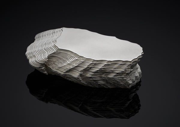 Silver Oyster Box