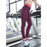 Casual Work Out Fitness Yoga Wear - Kastle-Junction.com