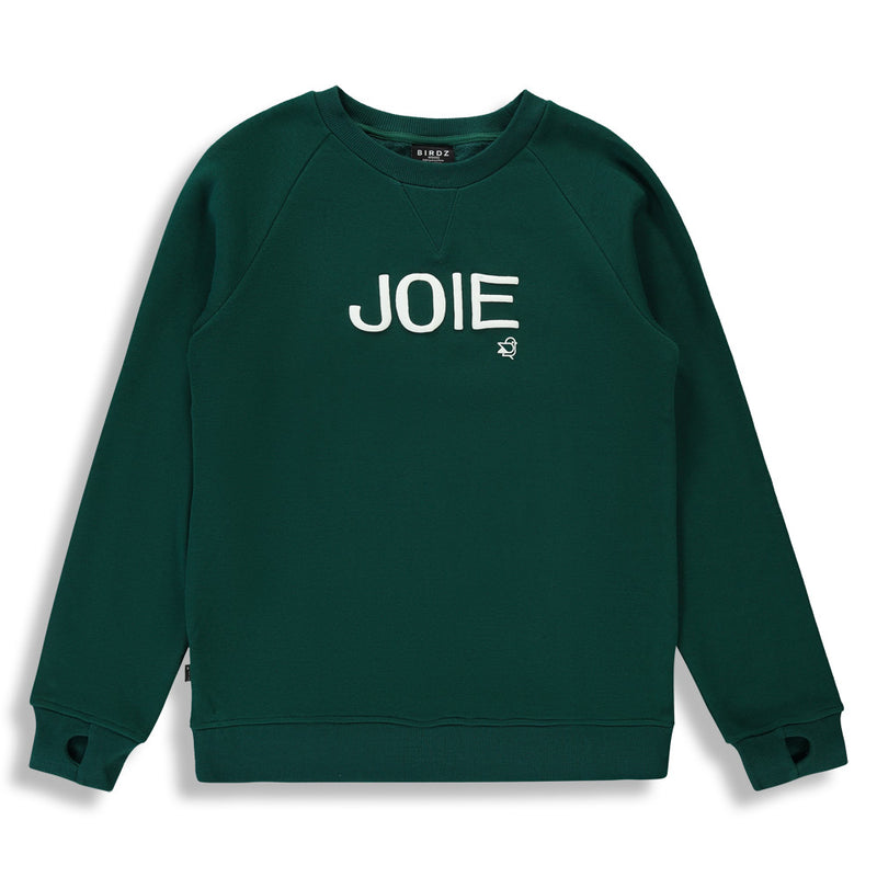 Shop online for this beautiful green JOIE Sweater, made for women, by BIRDZ.  Get free shipping on all orders over $75 CA & over $100 US. Get 10% off your first order. Shop online.