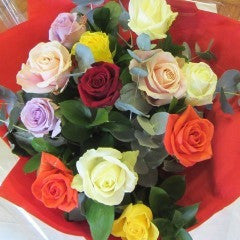 Dozen Coloured Roses, Roses - Oasis Florists