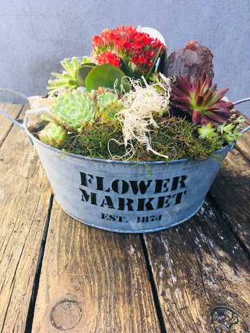 Alpine Bowl,  - Oasis Florists