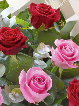The Red & Pink Rose Bouquet,  - Oasis Florists