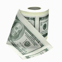 $100 Printed Toilet Paper Pack of 2