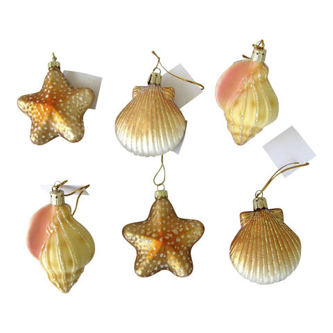 6 Blown Glass Shell Seashell Christmas Ornaments