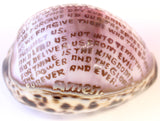 3-4 Inch Lords Prayer Genuine Cowry Shell