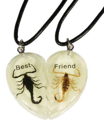 Glow in the Dark Acrylic Scorpion Best Friends Heart Cord Necklace