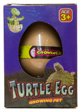 Grow a Turtle - Turtle Egg Hatching Pet, Just Add Water