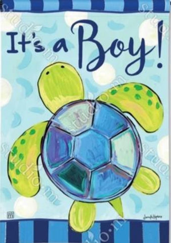 It's a Boy Sea Turtle