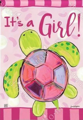It's a Girl Sea Turtle