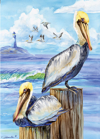 Pelicans 28x40 - Islander Flags of Kitty Hawk, Inc.