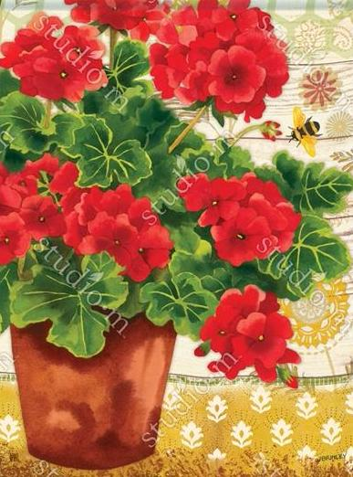 Potted Geraniums - Islander Flags of Kitty Hawk, Inc.
