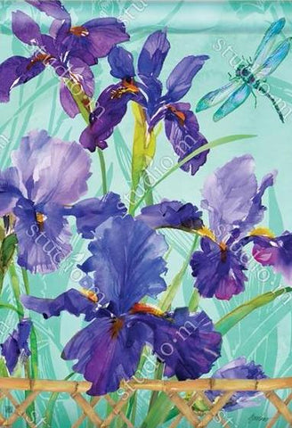 Purple Iris - Islander Flags of Kitty Hawk, Inc.