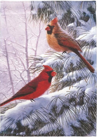 Winter Song Birds