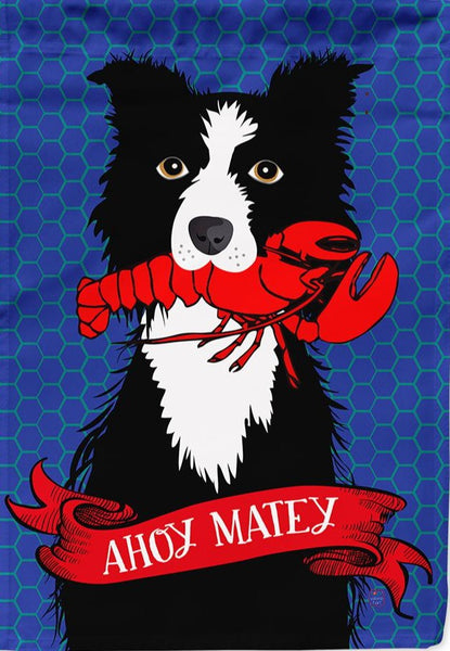Ahoy Matey Border Collie