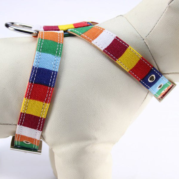 Colorful Rainbow Dog Collar In Size S M L Xl Xxl-Unicorns Wonderland